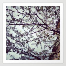 Blooming Art Print
