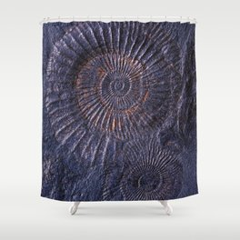 Ancient fossils Shower Curtain