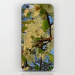Apple Blossoms I iPhone Skin