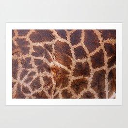 Giraffe Fur Art Print