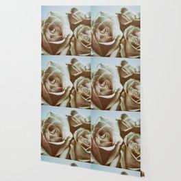 Fading Beauties Wallpaper
