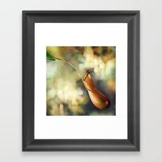 Pitcher Plant Framed Art Print
