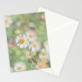 Sunbathing Daisies Stationery Cards