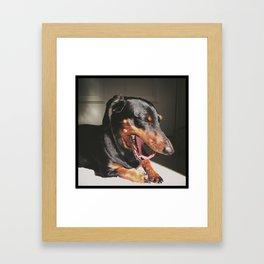 The Yawn Framed Art Print