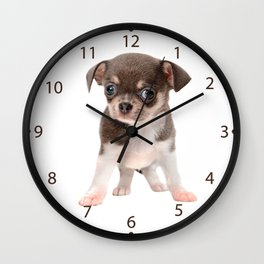 Chihuahua puppy standing Wall Clock