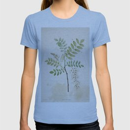 Black Locust Botanical Illustration T-shirt