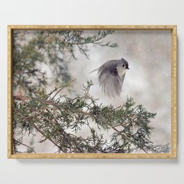 Fly-away Tufted Titmouse Serving Tray
