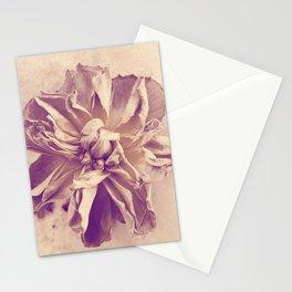 Vintage rose Stationery Cards