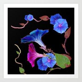 Black  Color Blue Morning Glory Art Design Pattern Art Print