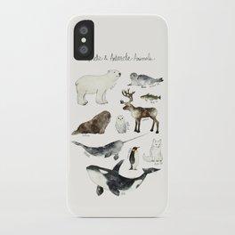 Arctic & Antarctic Animals iPhone Case