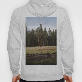 Giant Forest Love Hoody