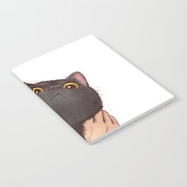 cat : huuh Notebook