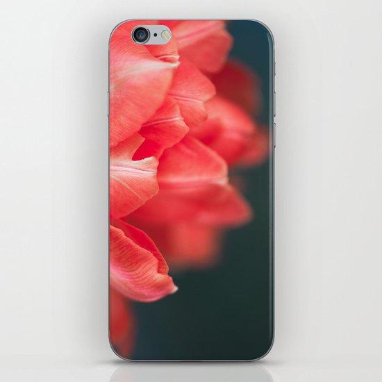 Peach Ruffle iPhone & iPod Skin