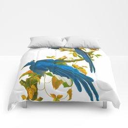 Columbia Jay Comforters