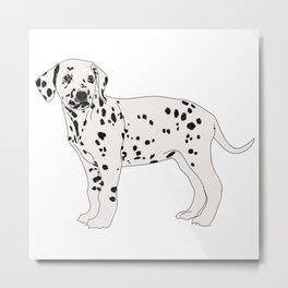 Dalmation dog Metal Print