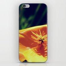 kiiroi iPhone & iPod Skin