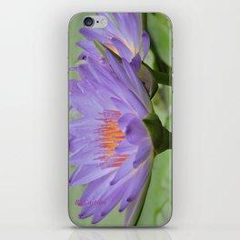 Blue Water Lilies in Hangzhou iPhone Skin