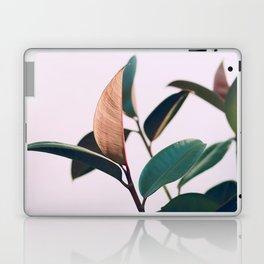 Ficus Elastica #4 Laptop & iPad Skin