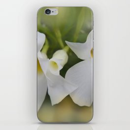 the beauty of a summerday -91- iPhone Skin