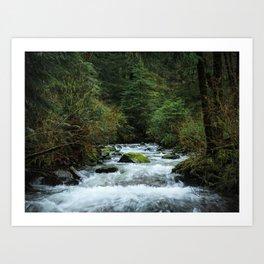 Neahkahnie Creek Cascades Art Print
