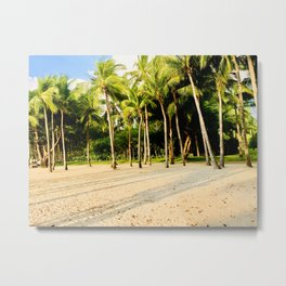 Coconut Trees Metal Print