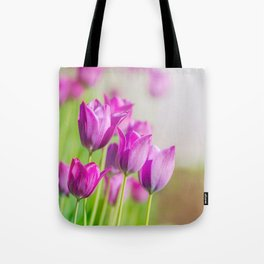 Beautiful view of tulips under sunlight landscape. Tote Bag