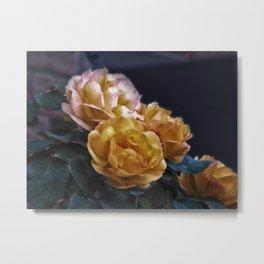 Brian's Roses Metal Print