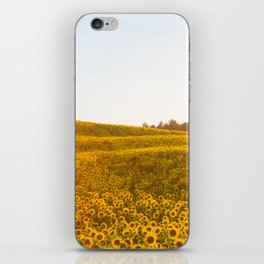 Field of Sunshine iPhone Skin