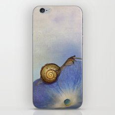 Snails  iPhone & iPod Skin