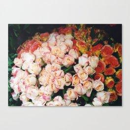 Paris roses Canvas Print