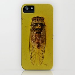 Cicada on Gold iPhone Case