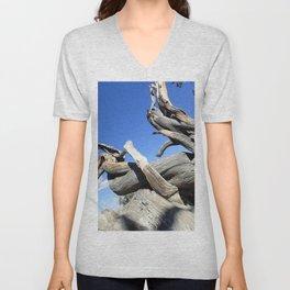 Trees and sky Unisex V-Neck