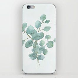 Eucalyptus Silver Dollar iPhone Skin