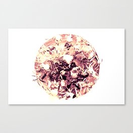 rite of spring - magenta  Canvas Print
