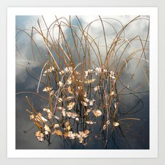 water grasses II Art Print