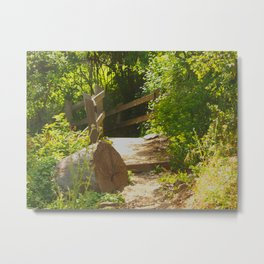Scenic Sunny Selby - Tilden Park Metal Print