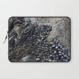Mussel Bed on Ocean Weathered Rocks Laptop Sleeve