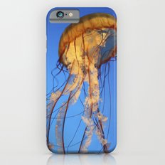 Jellyfish in Color iPhone 6s Slim Case