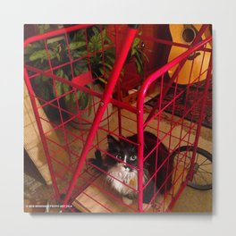 Cat in a Cart (Gracie Queen of Chicago Collection) Metal Print