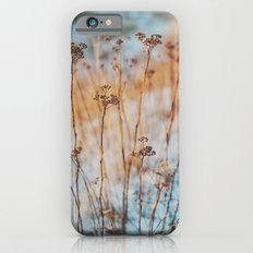 winterlight Slim Case iPhone 6s
