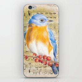 Blue Bird Music Collage Shabby Chic iPhone Skin