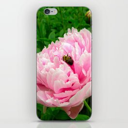 Bumble Bee on a Pink Peony iPhone Skin