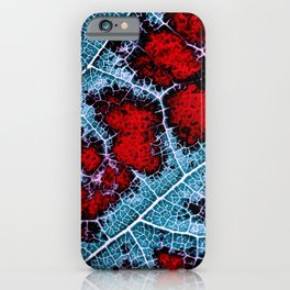 leaf structure macro III iPhone Case