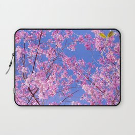 Peach blossom, Peach flower, Photo flower, beautiful view, Peach blossom hill,  Laptop Sleeve