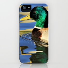 Mallard Duck Reflects on the Water by Reay of Light iPhone Case