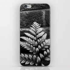 Nature & Brick iPhone & iPod Skin