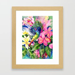 Hummingbird and Plumeria Florwers Tropical bright colored foliage floral Hawaiian Flowers Framed Art Print