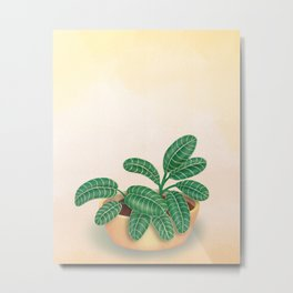 Leafy Green Plant in a Pot Painting Metal Print
