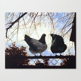 Wyandotte Chickens Canvas Print