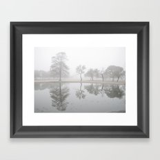 Pond Reflections Framed Art Print